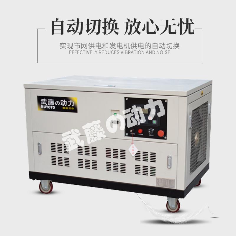 汽油发电机-北京小型汽油发电机价格