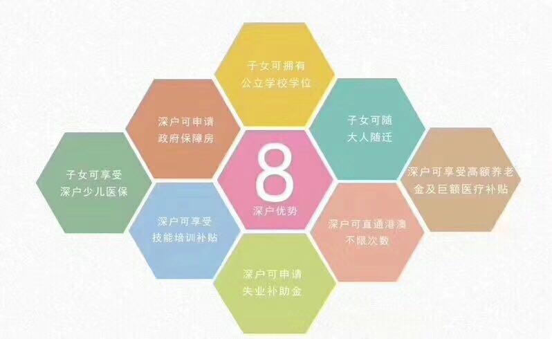 深圳市哪个机构能办理应届毕业生入深户怎么收费