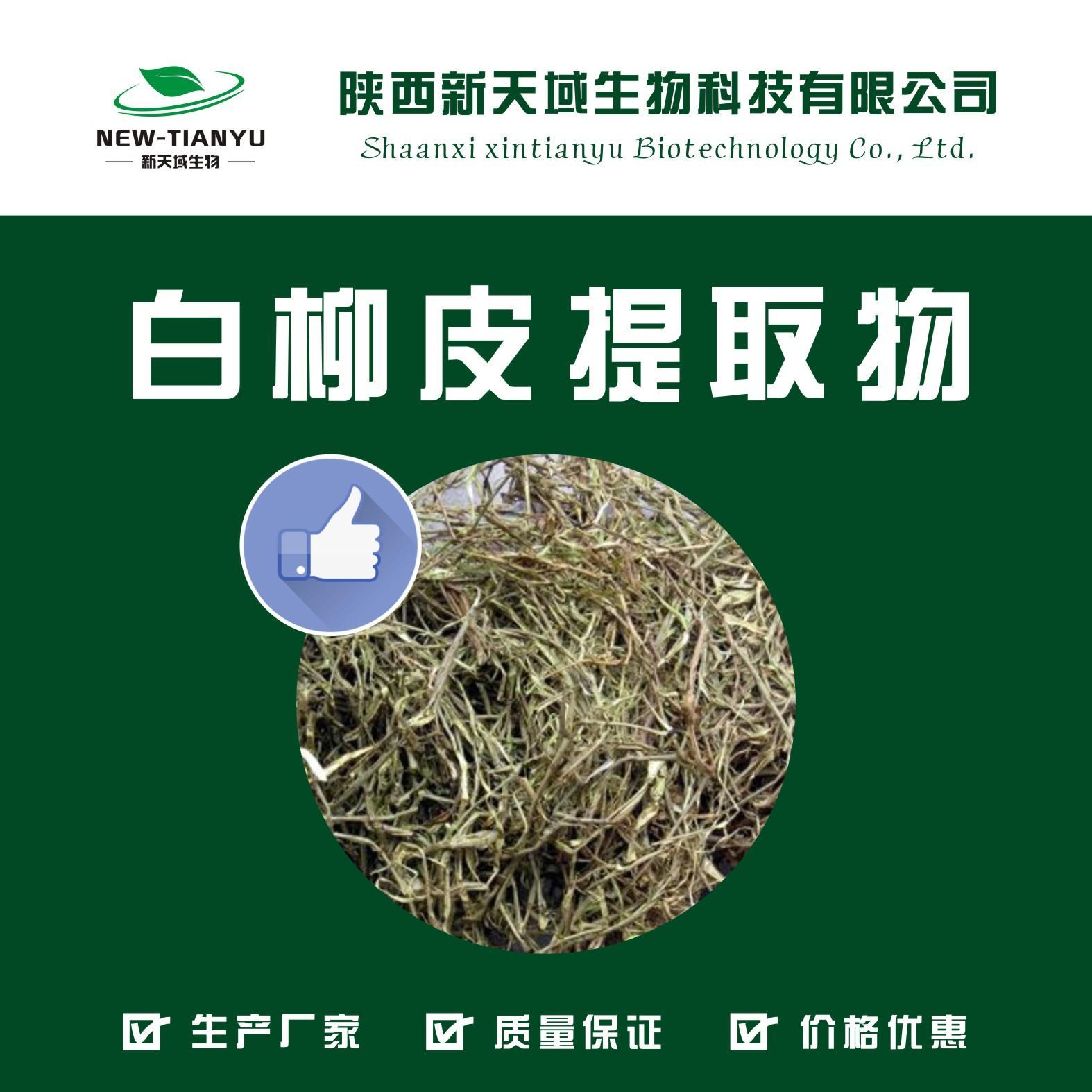 供应白柳皮提取物   水杨甙出售