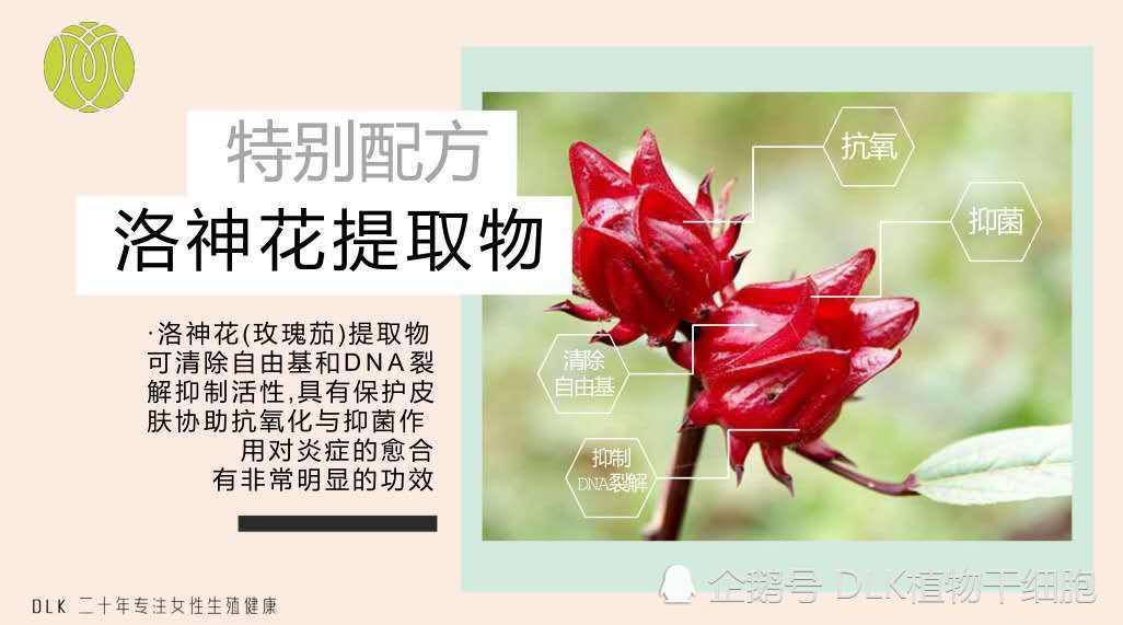 植物干细胞的味道好闻吗 具有非常惊人的再生能力