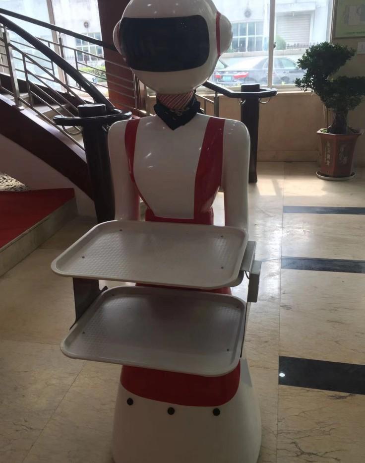 南宁酒店机器人上菜 丹顶鹤智能机器人