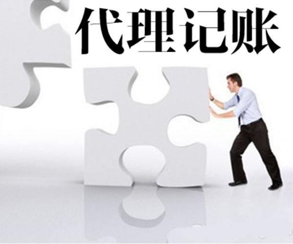 高新区代账记账哪家好 代账会计公司 专人做专行业